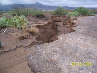 Image of a washed out soil bank.