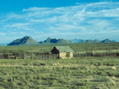 Chihuahuan Desert Rangeland Research Center